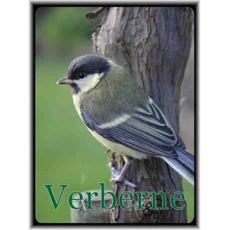 Naambord voordeur foto vogel dieren 103