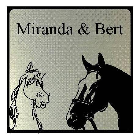 Naambordje RVS look 2 paarden
