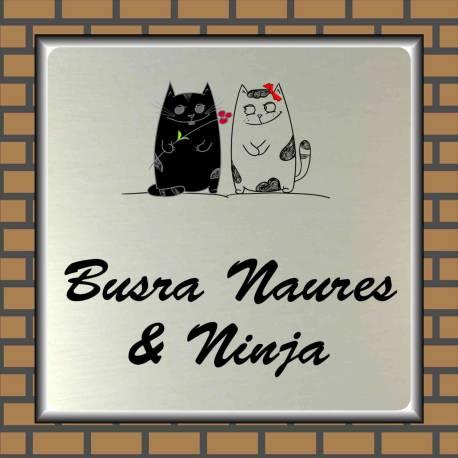 Naambordje RVS look 2 katten