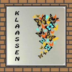 Naambordje vlinder 13