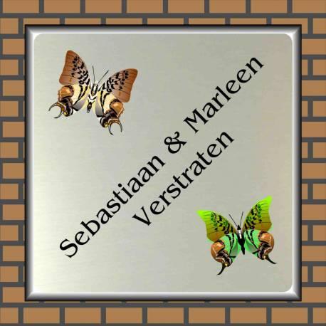Naambordje  vlinders 14