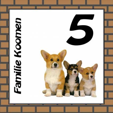 Naambordje honden 9
