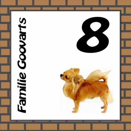 Naambordje hond 10