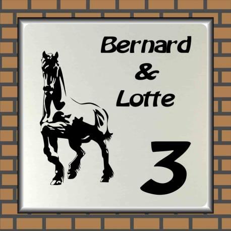 Naambord paard 8