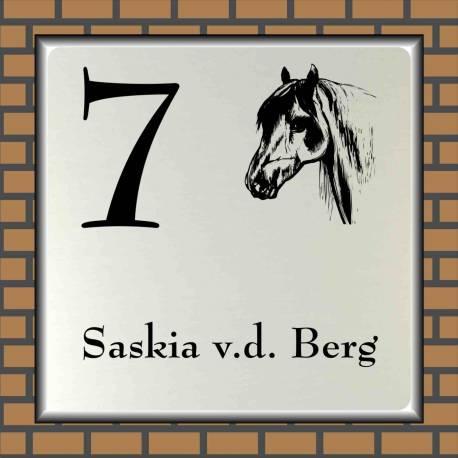 Naambord paard 7